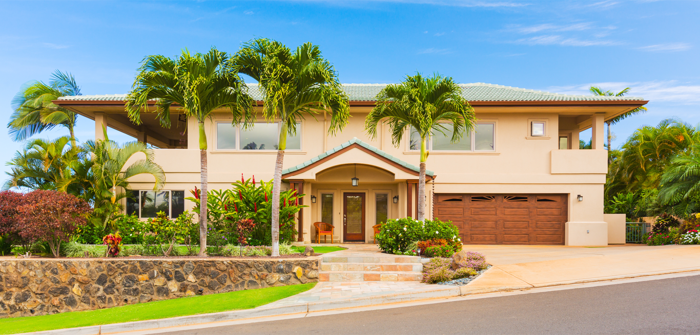 stucco palm trees home inspections